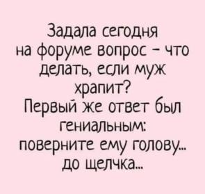 3215686_295x460.jpg